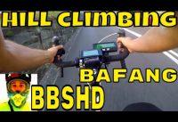 Bafang BBSHD 1000w mid-drive • extreme hill climbing test 46T • Electric Bike 48v BBS02 8fun motor
