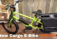Benno Boost Electric Cargo and Utility E Bike