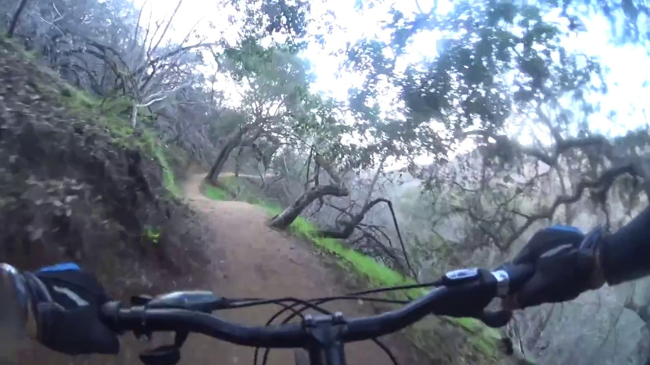Betty Dearing Downhill - Hollywood CA - Mountain Biking MTB