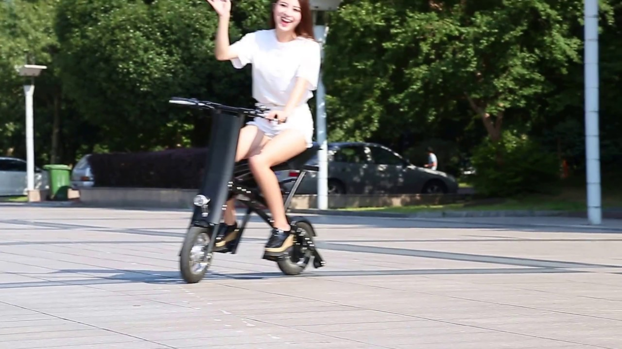 China OEM 2-Wheel Electric Folding Bike Foldaway Bicycle