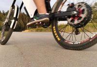 EBIKE - Fenix Electric Bike - Mxus v3