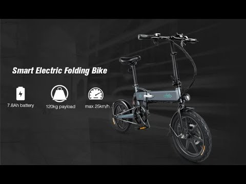 FIIDO D2 Folding Moped Electric Bike