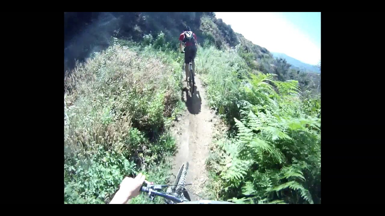 How Not to Mountain Bike
