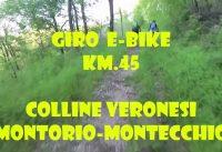 MOUNTAIN BIKE ELETTRICA ESCURSIONE