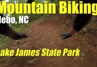 MTB Plan B - Bad crash at Lake James State Park Mountain Bike trails!