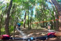 Mountain Bike Race Balm Boyette 30 mile 5/19/2019