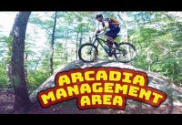 Mountain Biking Arcadia Management Area | Exeter, Rhode Island