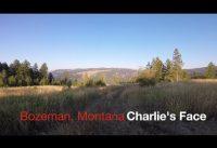 Mountain Biking Bozeman Montana - Charlies Face - Summer 2017 - POV