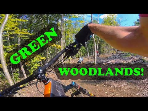 Mountain Biking Green Woodlands | Dorchester, NH