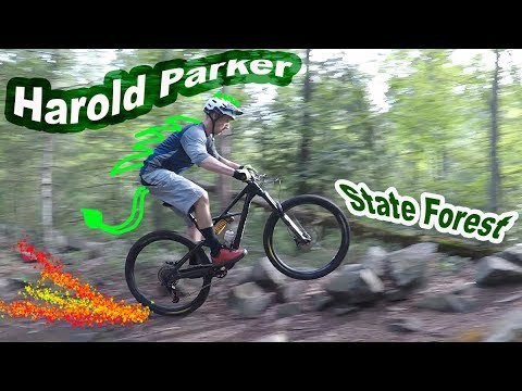 Mountain Biking Harold Parker State Forest | Andover, Massachusetts