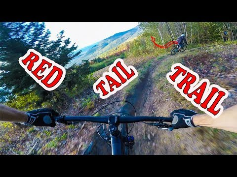 Mountain Biking Red Tail Trail | North Conway, New Hampshire