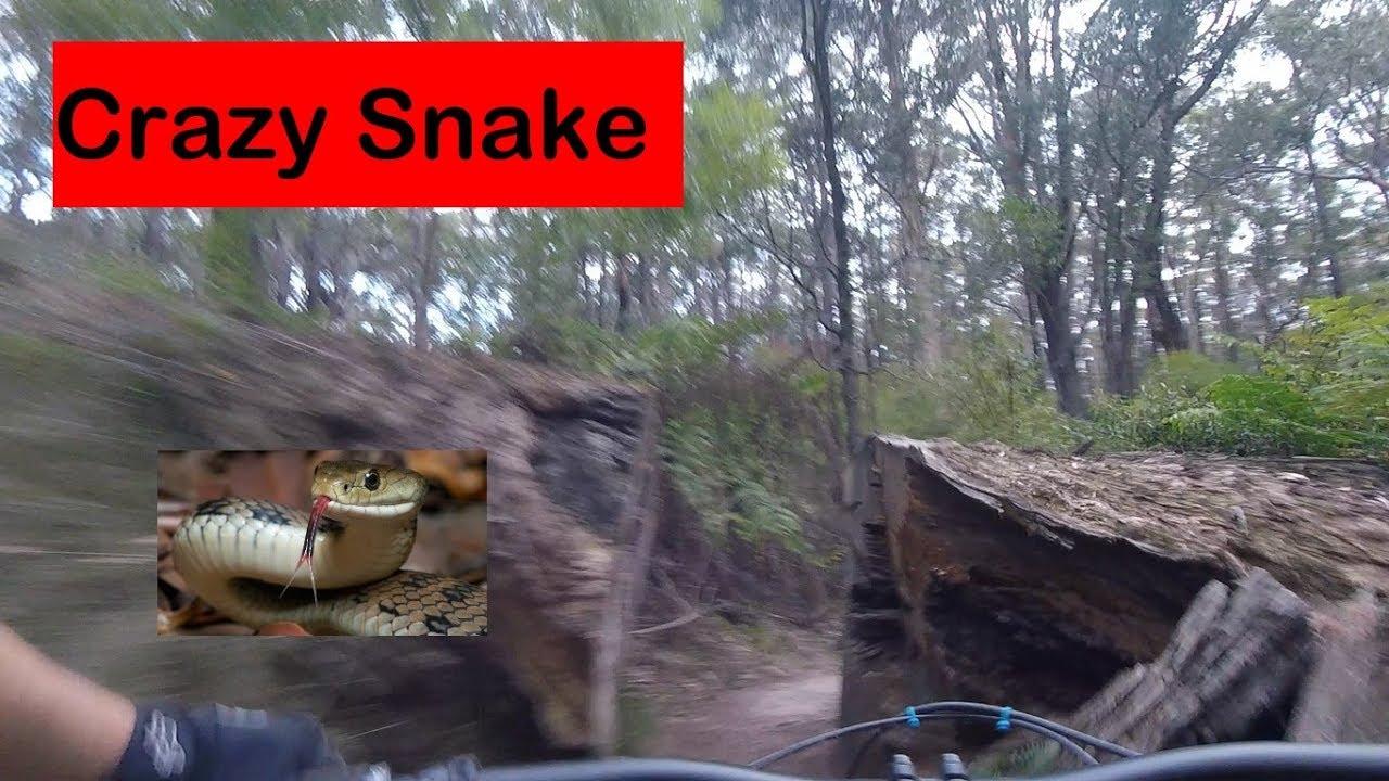 Reversing Crazy Snake at Erica Mountain Bike Park