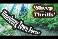 Sheep Thrills | Mountain Biking Hinesburg Town Forest | Hinesburg, VT