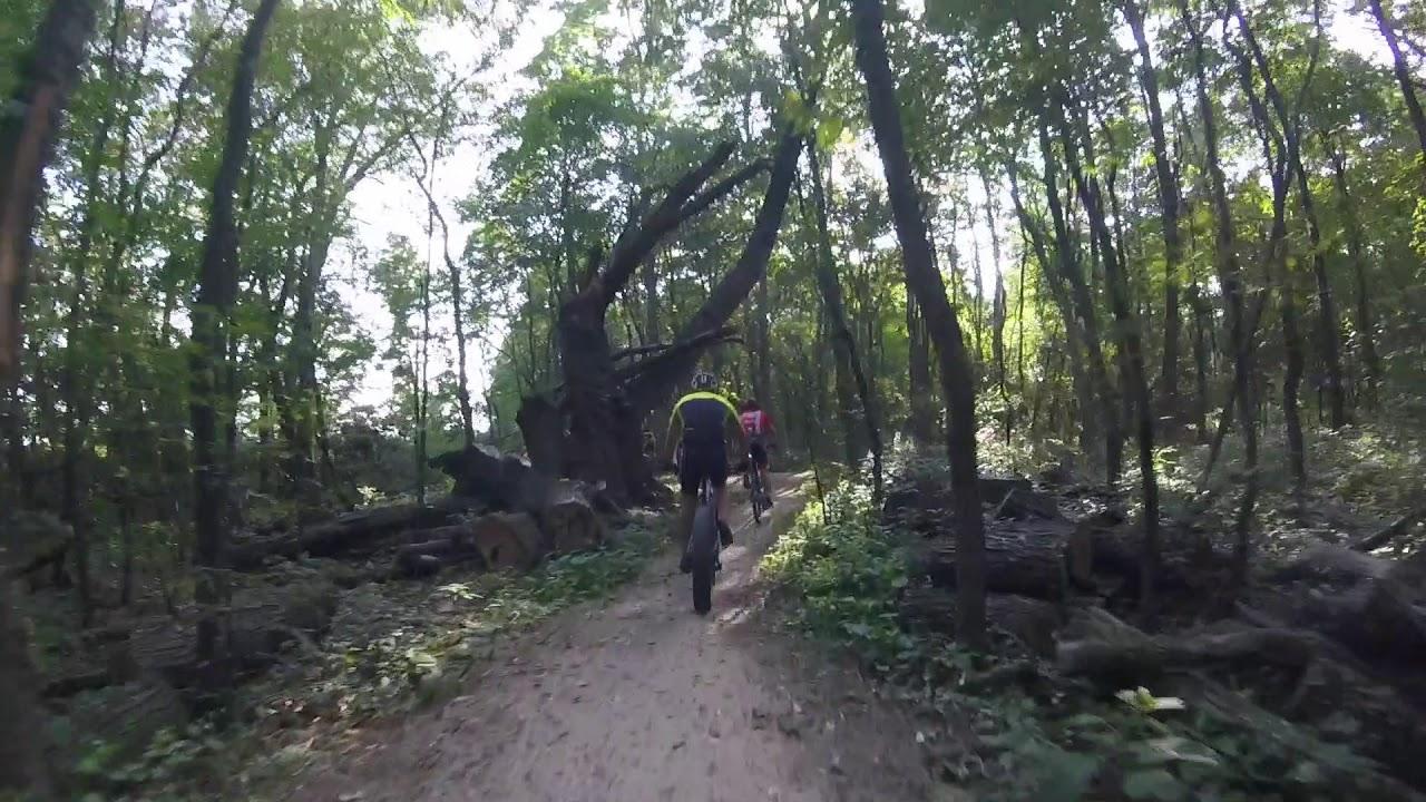The Mountain Bike Impact
