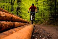 Trailaction - Hardtail mountain biking RAW