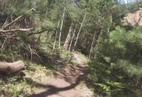 West Michigan Mountain Biking: Vasa Single Track