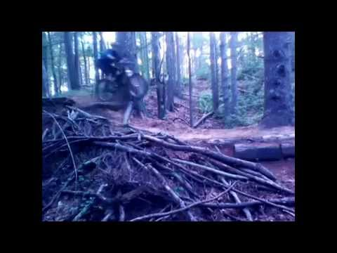 """FOX TAIL TRAIL"" Massasoit State Park, Mountain Bike ride"