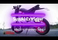 suzuki upcoming electric bike  in india  ( extrigger )