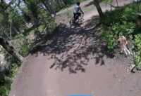 Jackson Hole bike park, incredible bike park.
