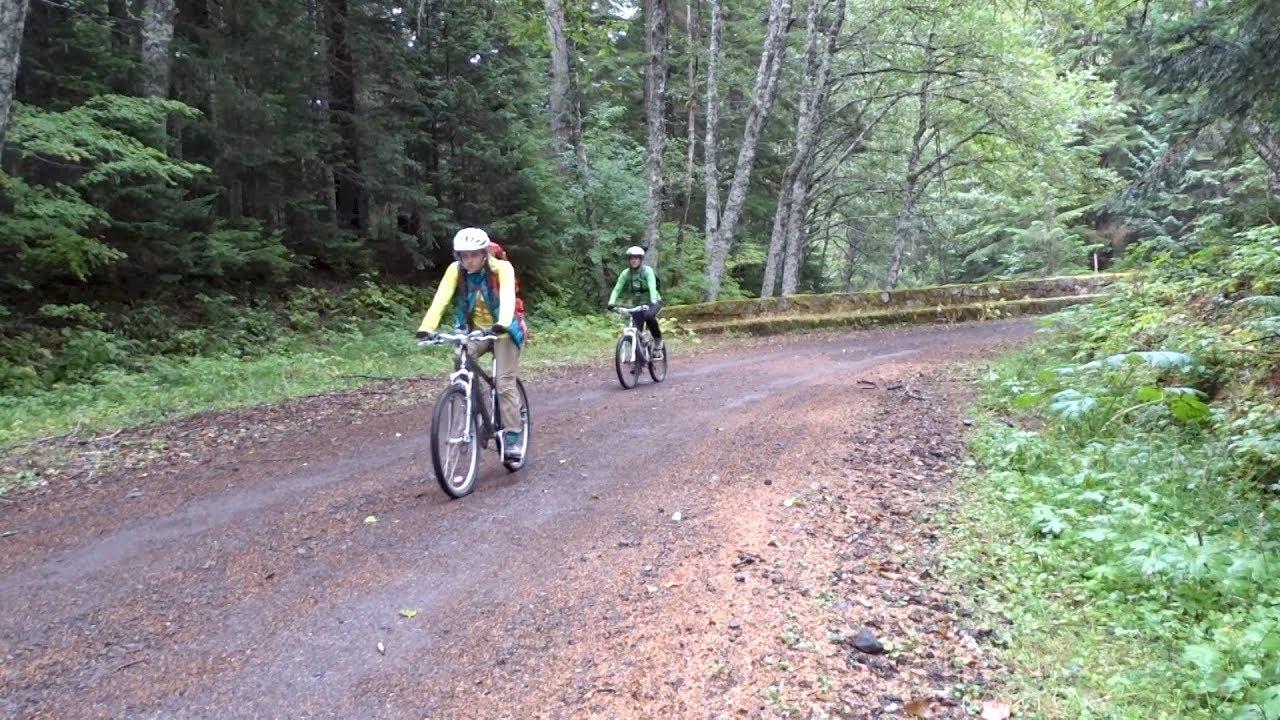 Mount Rainier Experience: Biking the Westside Road