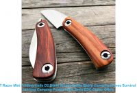 ☀️  LDT Razor Mini Folding Knife D2 Blade Wood Handle Sharp Camping Kn