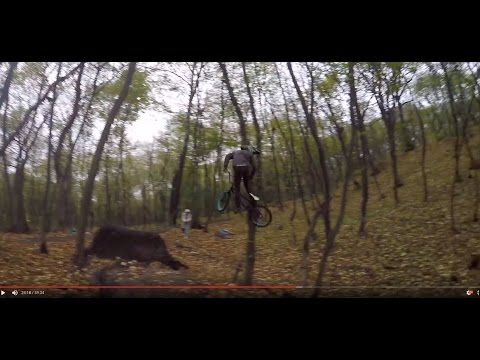 Downhill vs Street bikes (BMX)