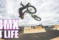 MOST AMAZING BMX FREESTYLE TRICKS - BEST BMX TRICKS VIDEO COMPILATION