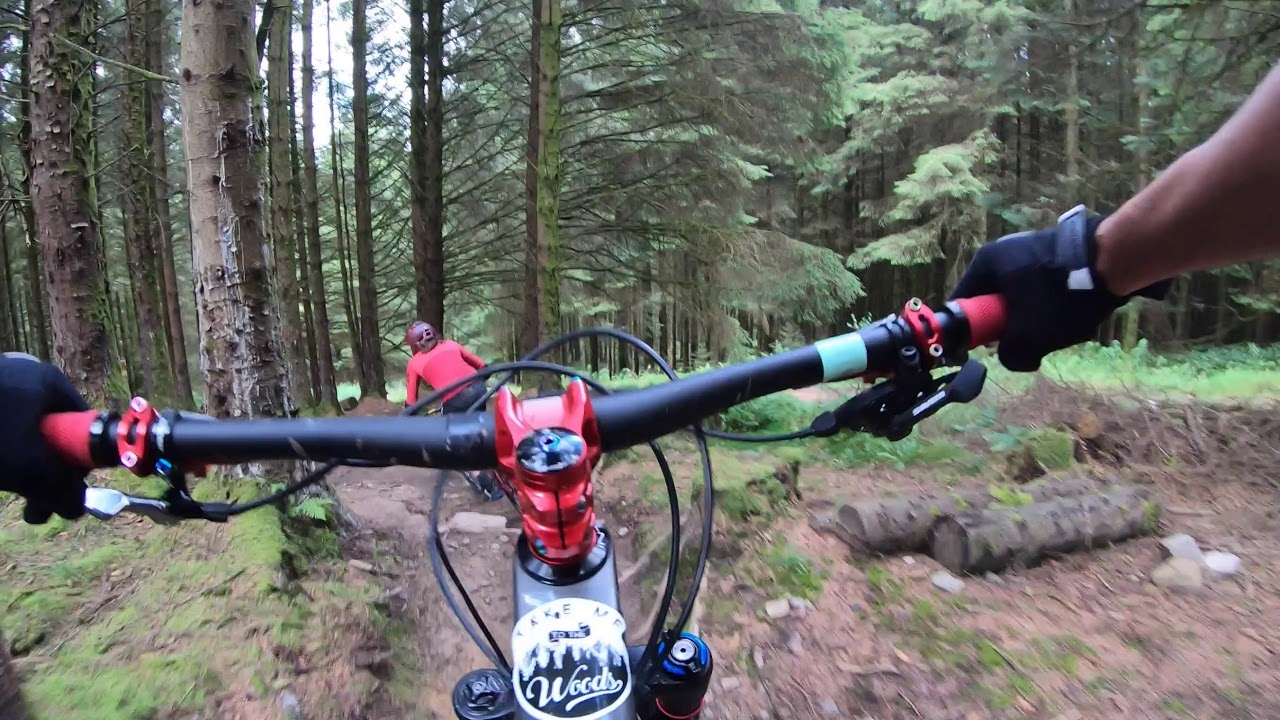Bike Park Wales - Root Manoeuvres (Red)