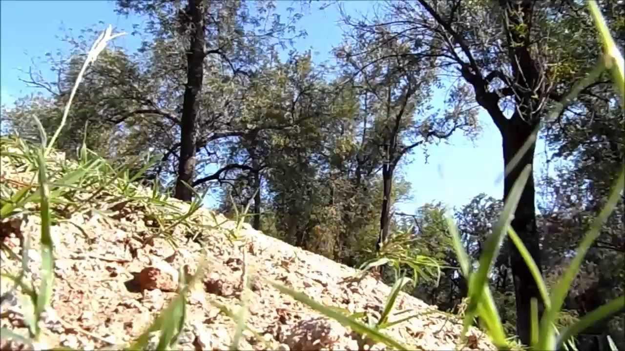 Pista BMX del Parque San Rafael