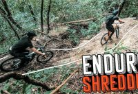 SHREDDIN' MTB TRAILS WITH JORDY!
