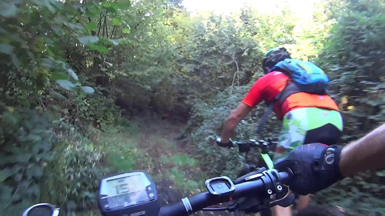Alvese Maruni bike 2019