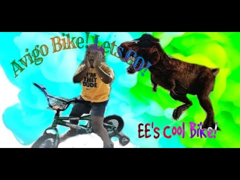 Avigo Boys BMX Bicycle by EE's Cool Toys review