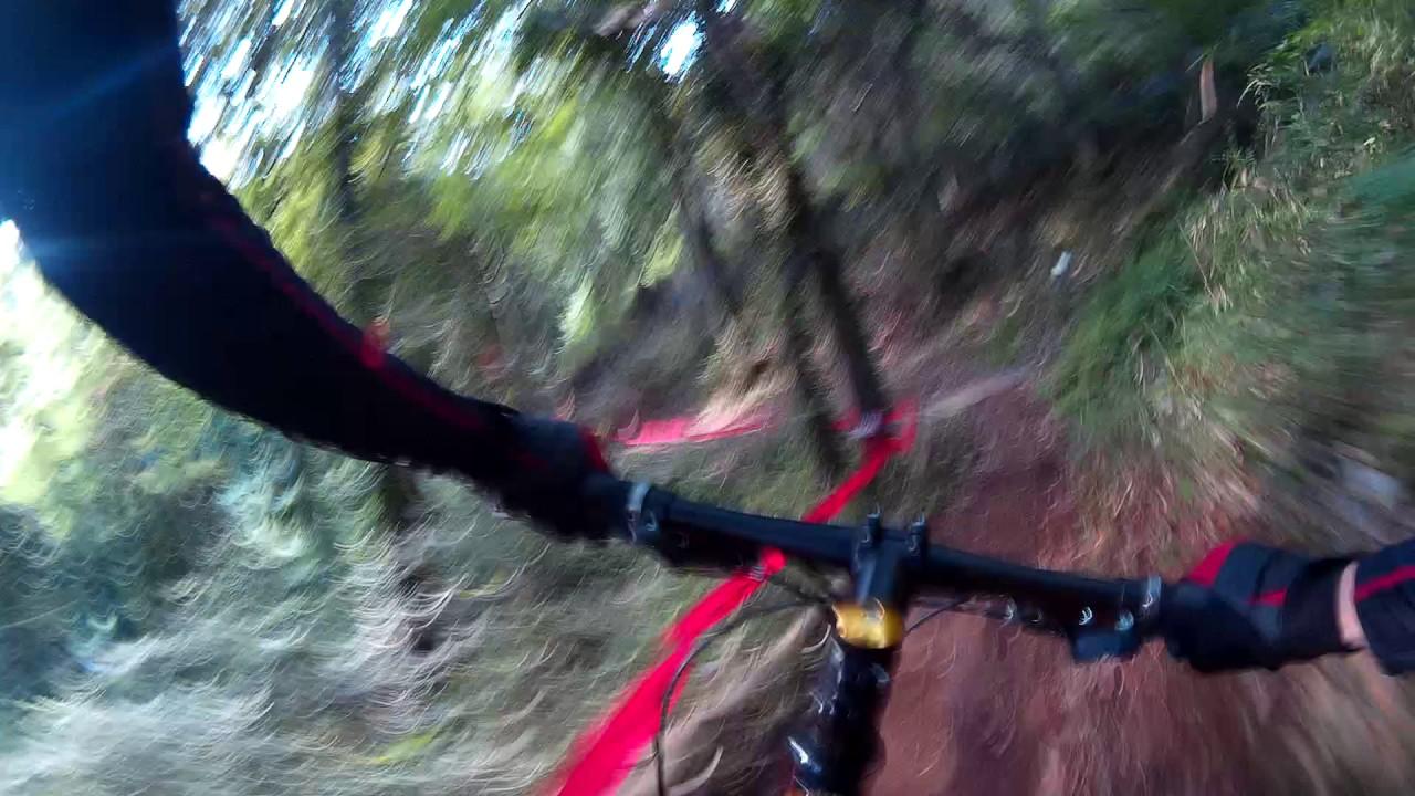 Mountain bike trail riding SMP trail Ashikaga