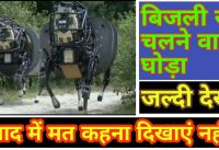 Bijli se chalne wala Ghora  | Electric Horse 2020 | Electric Machine 2020 | New Tech Scheme