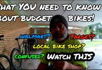 NOT FOR KIDS!!Big Box Store Bike vs LBS Budget Bikes What to Look For..filmed 6 1 19