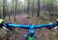 Mountain Bike Riding in The Woods
