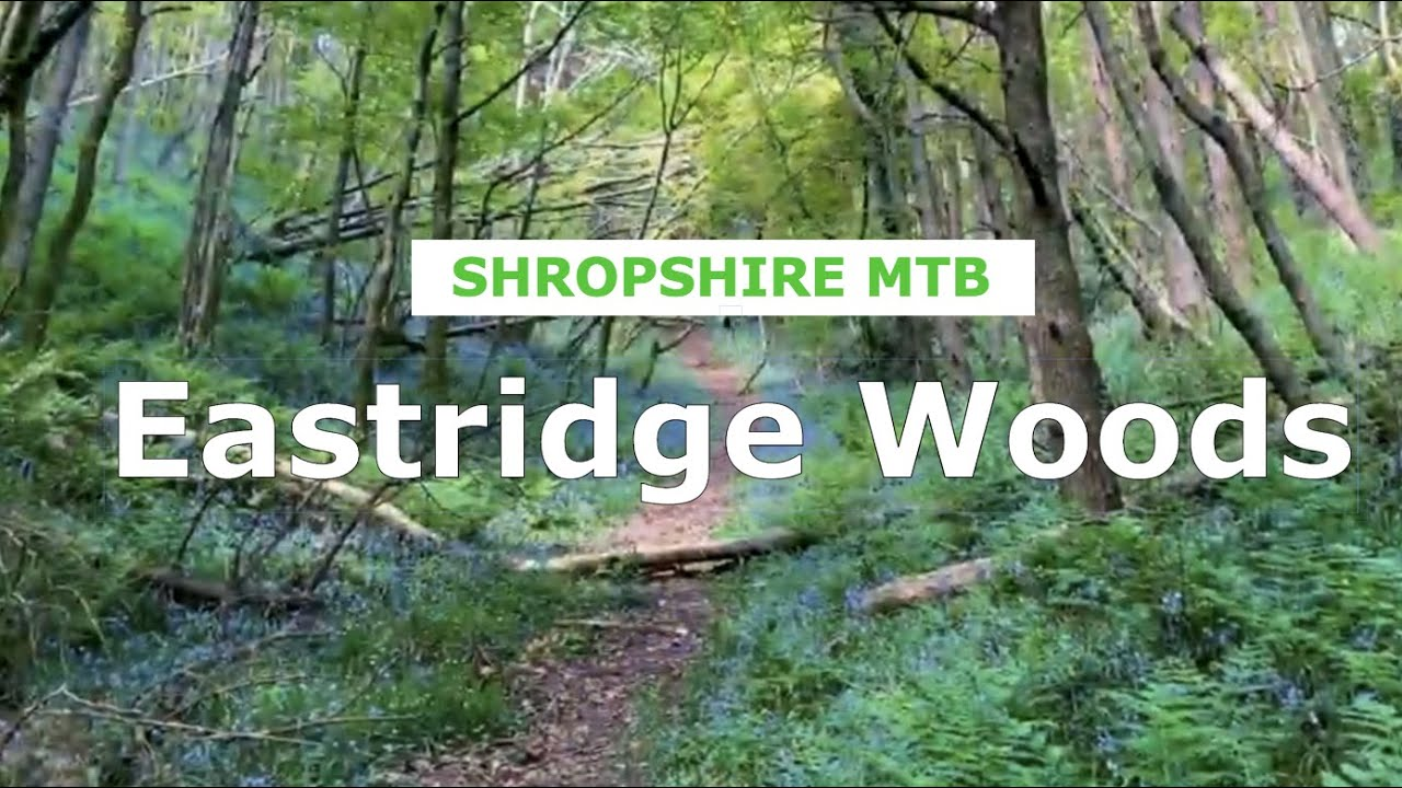 Eastridge Woods - First time, on a 1994 hardtail - Shropshire MTB