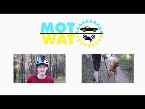 FAST Mountain Bike riding around Westleigh MTB trails with Oscar the Viszla | Trail Dog