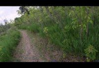 Iwen Park North Loop - 06/22/2020 - GoPro Mountain Bike Footage