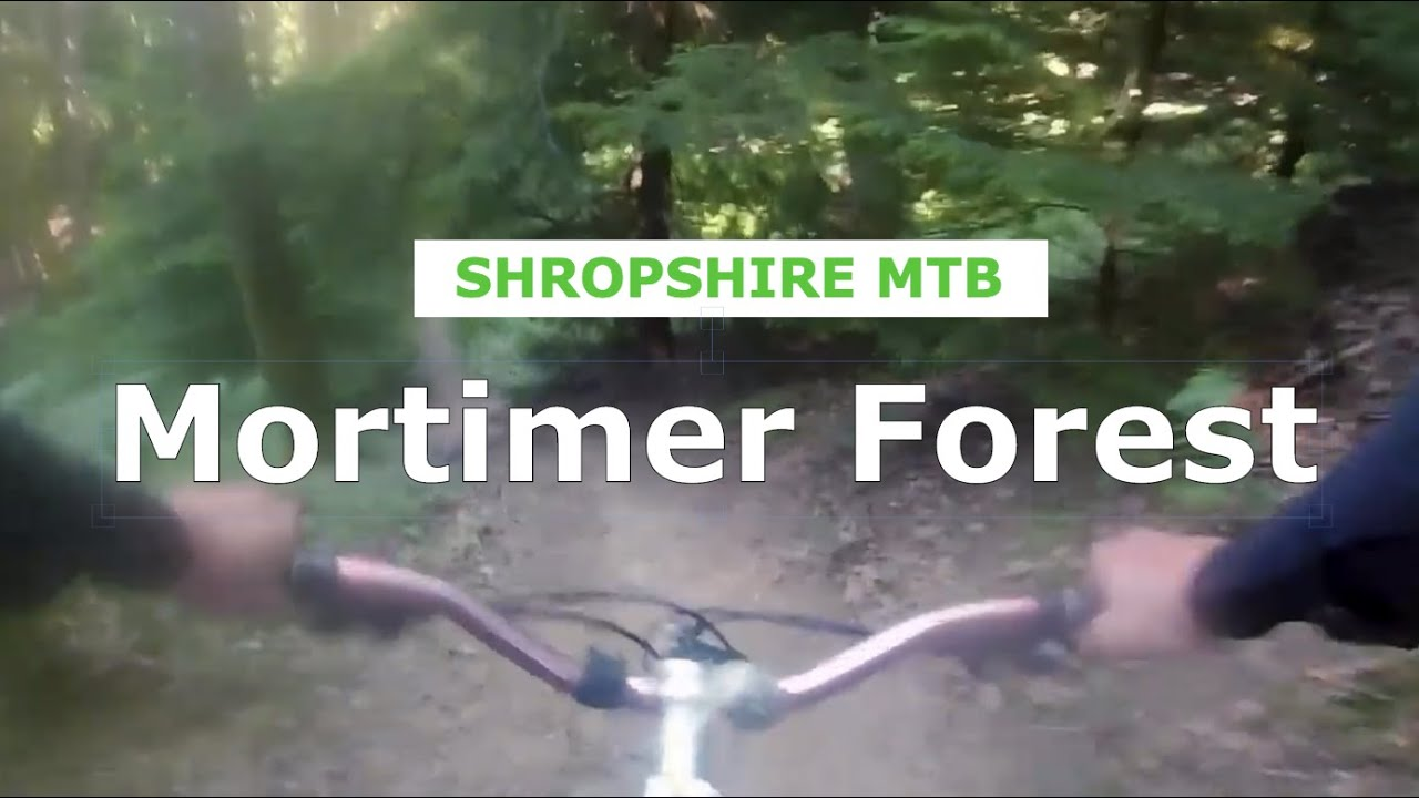 Mortimer Forest - Is this really a blue trail? 90s DH - Shropshire MTB