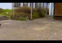 BMX Fail :))