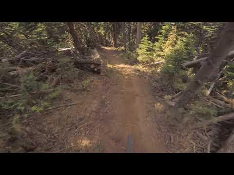 Big Sky Bike Park - NEW TRAIL August 2020 - Scherminator - POV - Mountain Biking